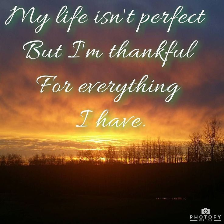 Happy Thanksgiving wishing you much love gratitude & abundance today and throughout all your years.