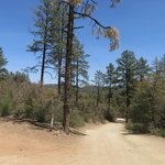 Prescott National Forest Camping: 21 Campgrounds in Prescott National Forest - Campendium