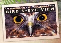This book shows what birds can actually see. You'll be amazed to find out that some birds can see 360 degrees around themselves, some birds have their own built-in goggles for underwater swimming, others have their own built-in sunglasses. Some birds can multi-task - one eye looks for food, the other eye keeps watch for predators. Fascinating facts...