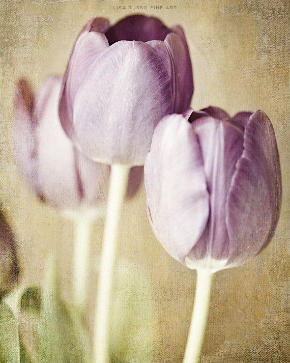 Pastel paars bloemen Print of Canvas Wrap door LisaRussoFineArt