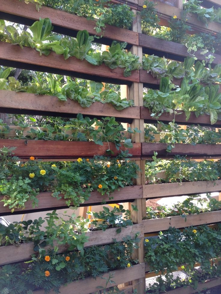 DIY Patio Privacy Screens - Ideas and Tutorials!