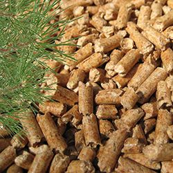 Fuel pellets. To buy pellets by wholesale from the manufacturer at the best price. Production of high quality biofuel wood pellets