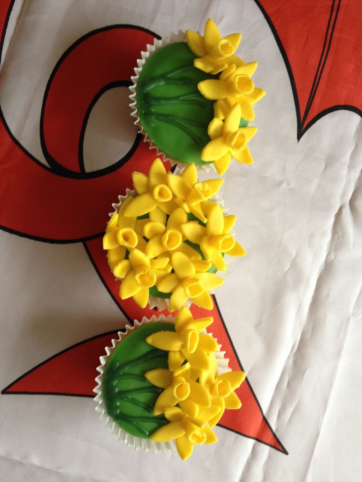 St David's Day 1st March