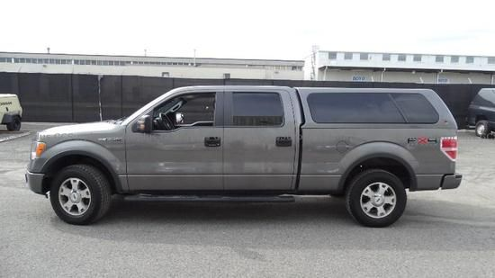 Picture of 2010 Ford F-150 FX-4