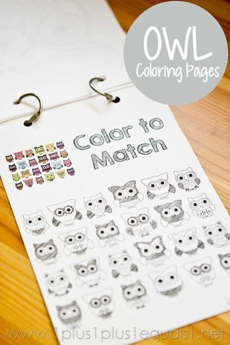 Free Owl Coloring Printables ~ 12 different owl coloring pages