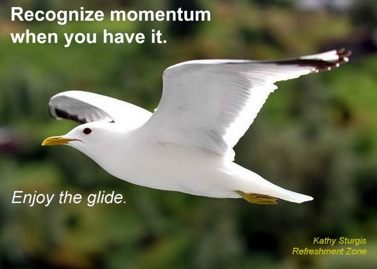 What's going really well for your organization  right now? Ask your team. It's important to recognize momentum when we have it. Talk about it. Appreciate it. Celebrate a moment of  glide. Visit www.refreshmentzone.com for a leadership lift. Supporting your success….~Kathy~