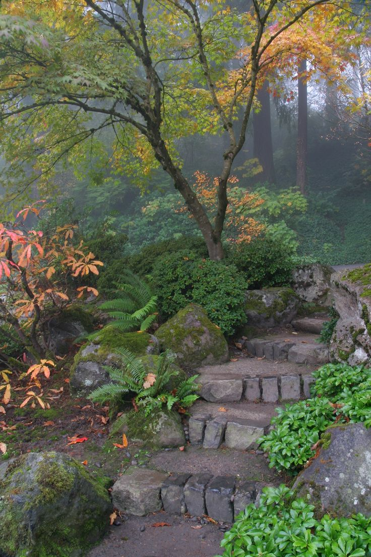 a wonderfully foggy morning with fall colors in Portland Oregon. WesDotPhotography . on 500px