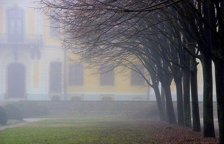 Kiszely István  Lamberg-kastély parkja. A kép január 26-án készült Móron. Több kép Istvántól: www.facebook.com/istvan.kiszely