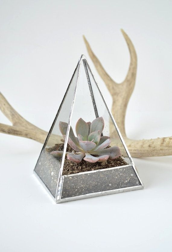 Pyramid Succulent Terrarium $35.00 by The Land of Salt www.thelandofsalt…