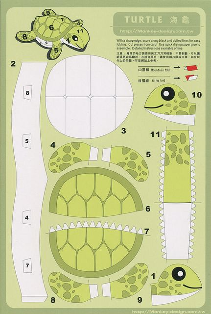 Turtle - Cut Out Postcard by Shook Photos, via Flickr