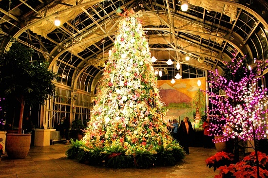 7 Best Holiday Lights Images On Pinterest Holiday Lights Xmas Lights And Botanical Gardens