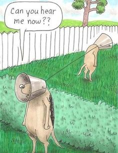 Funny Dog Cartoon Joke Pictures