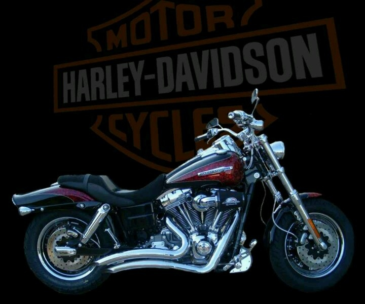 180 Best Harley Davidsons Images On Pinterest