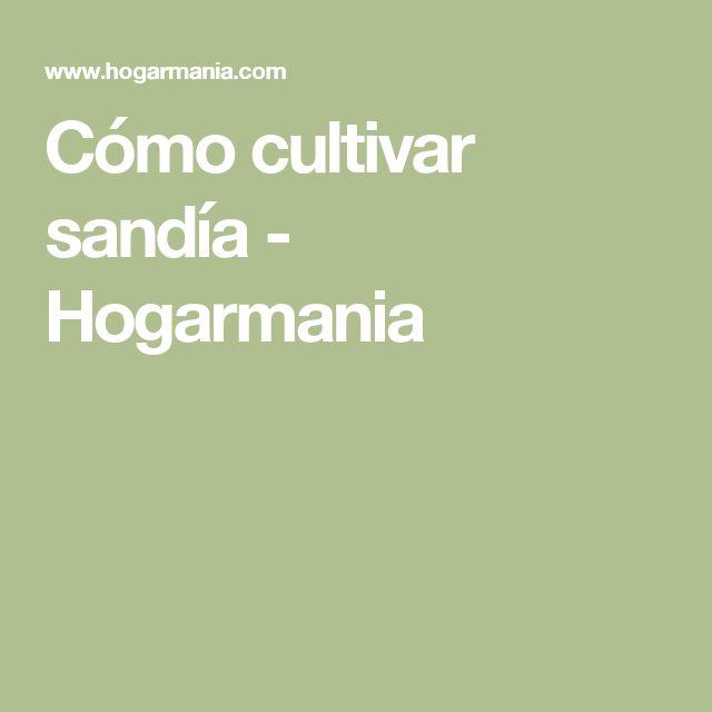 Cómo cultivar sandía - Hogarmania