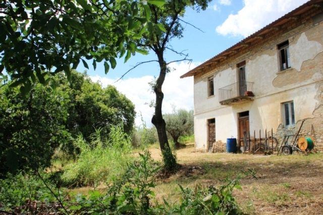 Property for sale in Abruzzo Castilenti Abruzzo Italy - Country House > http://www.italianhousesforsale.com/property-italy-casa-degli-olivi-castilenti-abruzzo-1710.html