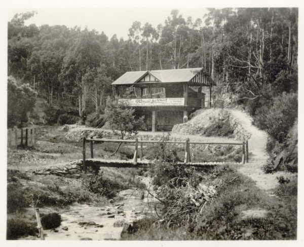 Central Springs Reserve many years ago
