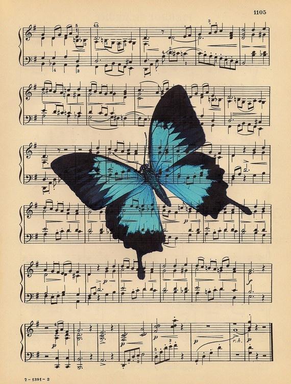Butterfly on sheet music