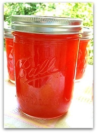 Canned Time: Watermelon Jam