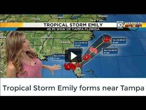 Tropical Storm Emily forms near Tampa | NEWS | KENH CUA BE