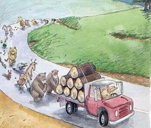 Que triste es que lo envidiosos que estamos siendo con los animales, ya que el planeta no es nuestro; y sin verlo nos hacemos y les hacemos daño.