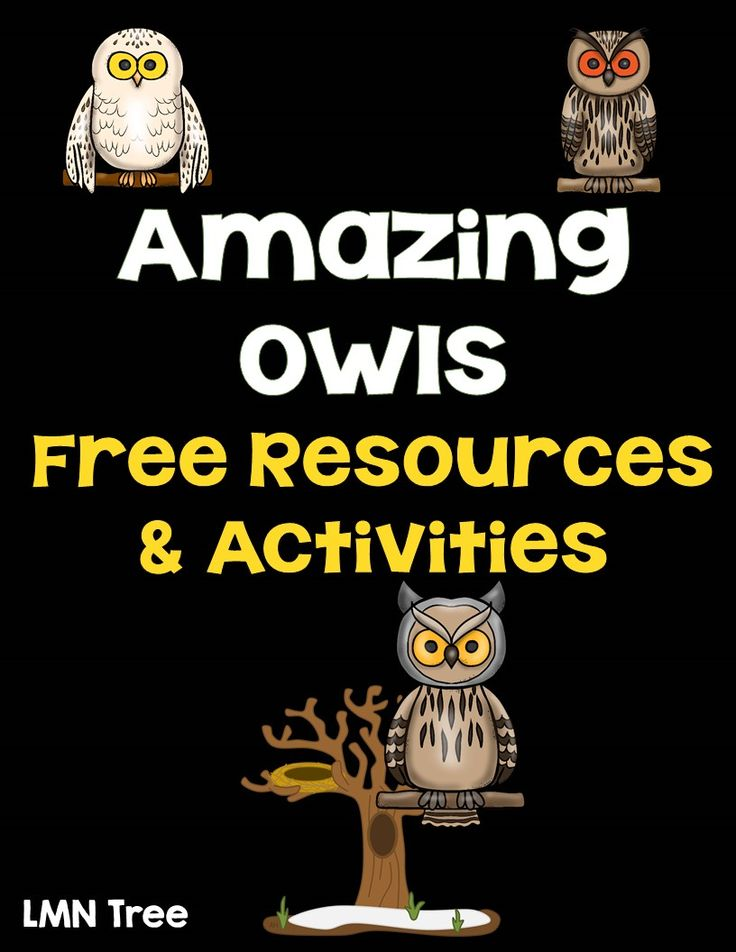 I have always been fascinated with owls. Owl themed activities and fall seem to go hand-in-hand. I have been doing lots of research over t...