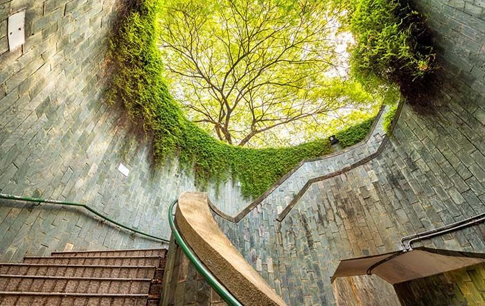 22 Insta Worthy Hiking And Nature Trails In Singapore You Ll Want To Explore With Images Nature Trail Activities In Singapore Famous Places In France