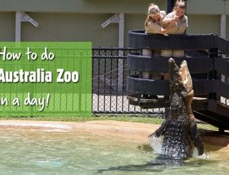 How to get the most out of a day at Australia Zoo #thisisqueensland