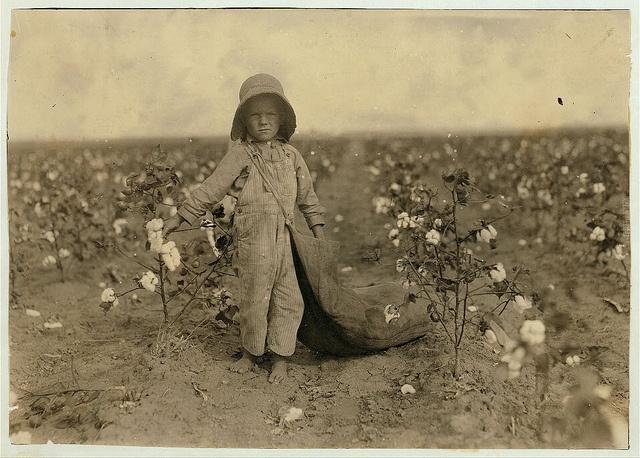 Lewis W. Hine, 5-year old Harold Walker picking cotton, 1916