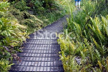 Feet on Boardwalk, Nelson Lakes National Park, NZ Royalty Free Stock Photo