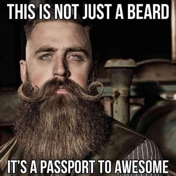 40 Funny Beard Memes Hottest Celebrity Beards To Celebrate