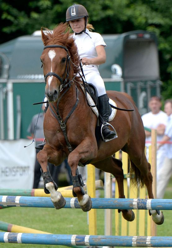 Sportowy duch Pikniku Charytatywnego - zawody hippiczne  #horse #jockey