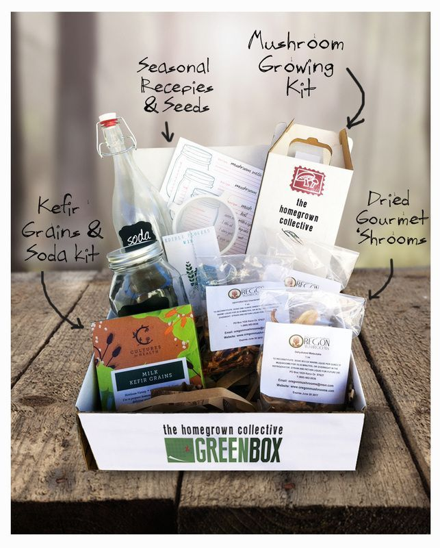 Learn to be self-sufficient and lead a self-sustainable lifestyle with the Homegrown Collective GreenBox.