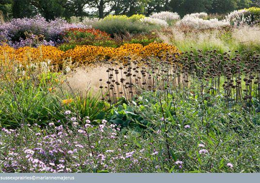 Jane Brockbank Gardens... Sussex Prairies