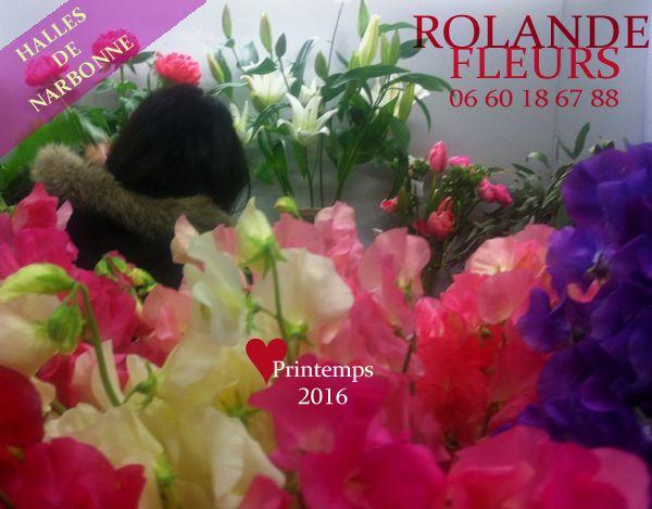 En ce mois d'avril et ce mois de mai, Rolande fleuriste aux halles de Narbonne vous propose à son étal des fleurs fraîches coupées de grande qualité ; pivoines, hortensia, pois de senteur, ornithogalum, œillets de poète, roses Mini Eden, œillets... Plantes vertes en pot.