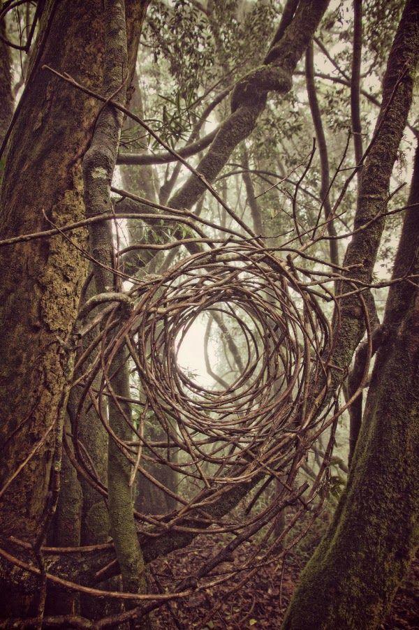 Simon Max Bannister, Artist: Exploring Land Art