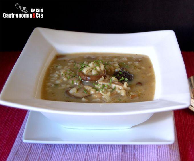 Sopa de cebada perlada y setas