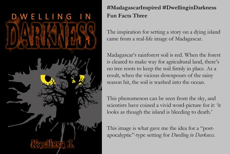 Fun Fact 3! #MadagascarInspired #DwellinginDarkness #LemurBook