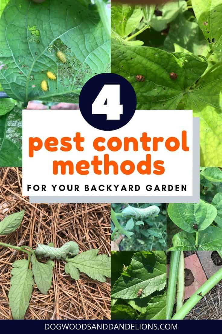 Natural Pest Control Methods For Your Garden In 2020 Pesticides For Plants Natural Pesticides Pest Control