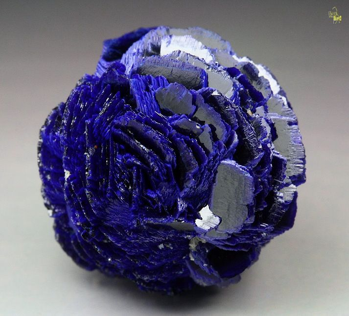 Azurite / Poteryaevskoe Mine, Western-Siberian Region, Russia...What would you say? A crystalline blue rose?