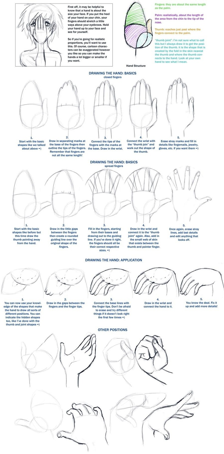 Drawing hands: Beginner techniques - human anatomy - drawing reference