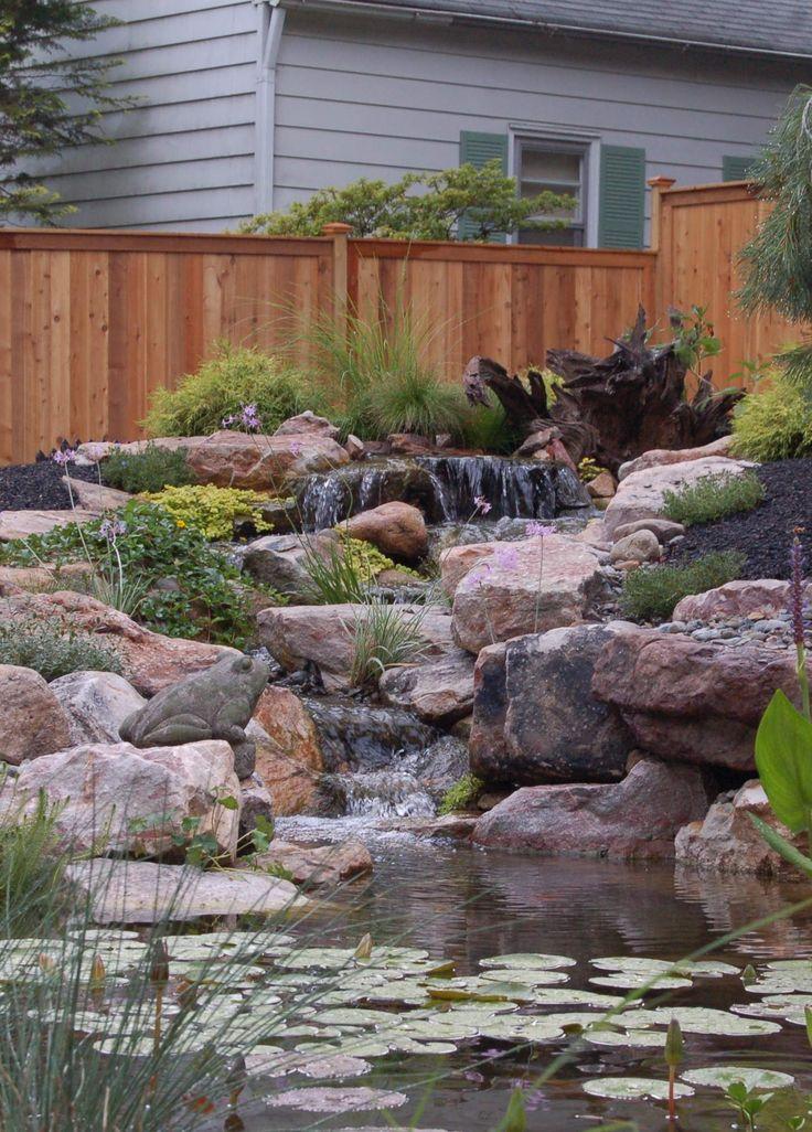 Amazing garden pond relaxing to look