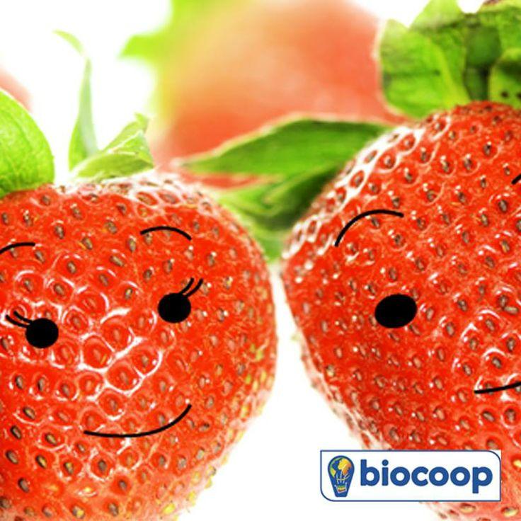 En mai, c'est la fraise !