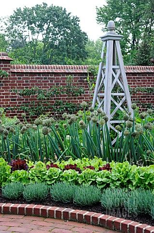 Edible Border - I have a spot set aside for this next spring, including edible flowers.