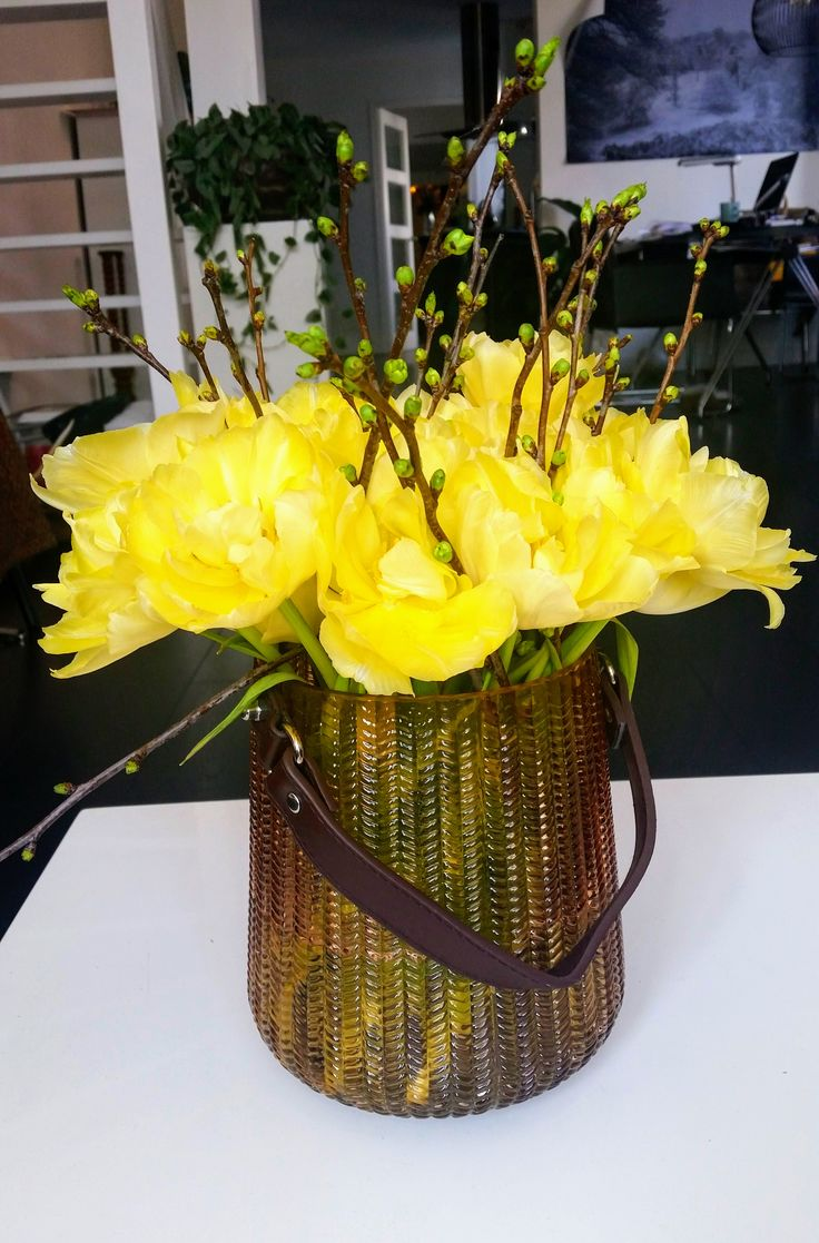 #Lente met dubble gele #Tulpen