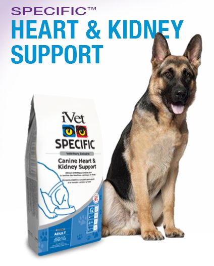 Kidney Support Gold For Dogs Reviews