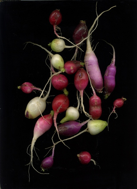 vegetables  | Food. Art + Style. Photography: Food on black by ranjit |