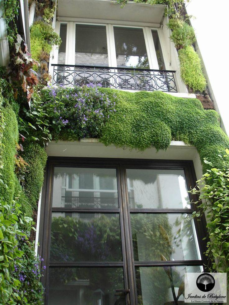 façade végétalisation gilison paris | Mur végeétal extérieur | Jardins de Babylone