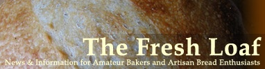 The Fresh Loaf--The definitive reference for yeast bread. More recipes than you can shake a stick at, plus technique, forums, success stories, check it out!