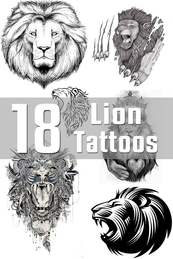 18 Lion Tattoo Designs | The Body is a Canvas