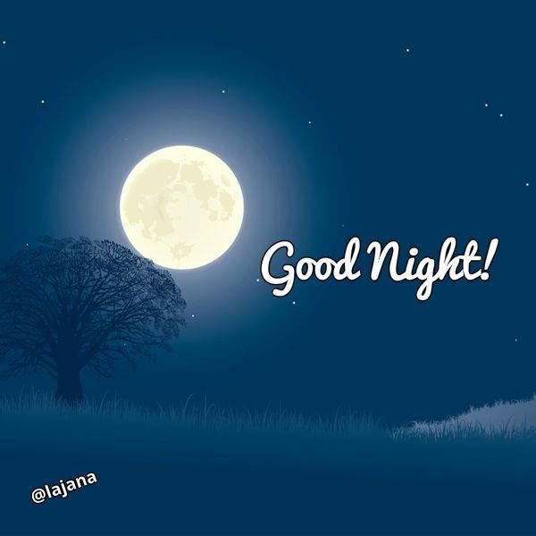 How Brightly Is The Moon Shining Down On You? Good Night